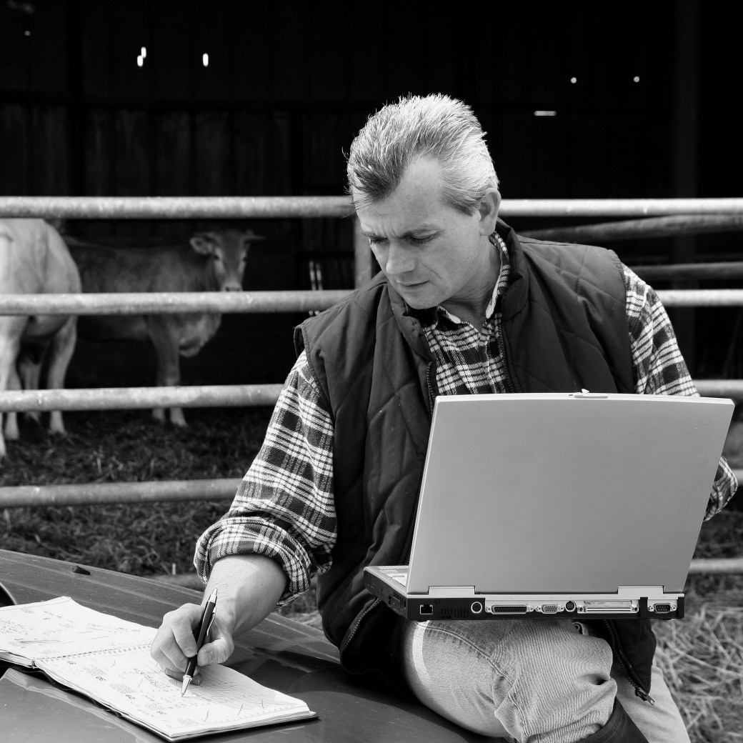 Heeft de btw-plicht voor boeren en tuinders ook gevolgen voor de verzekeringen?