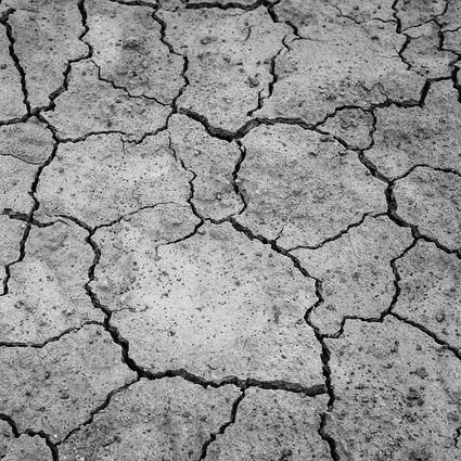 Financiele schade door aanhoudende droogte