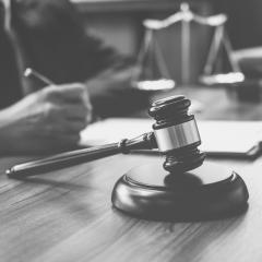 Frontyr: juridische ondersteuning voor boeren en tuinders